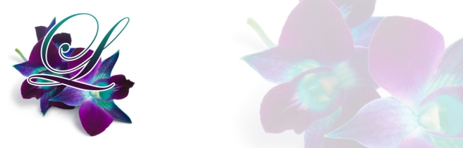 orchid-wordpress-header